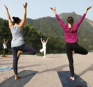 cours yoga maitri inde nature himalaya
