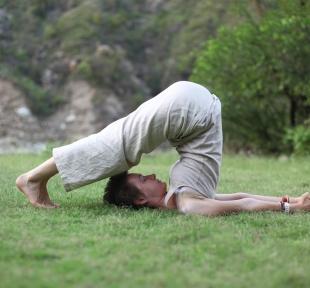 halasana posture charrue maitri yoga