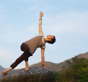 vashishtasana posture maitri yoga