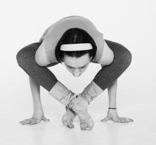 maitri-bhujapidasana-yoga-vedas
